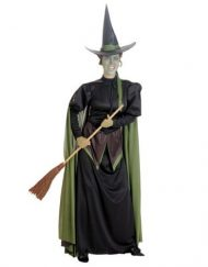 Women's Wicked Witch Of The West Costume