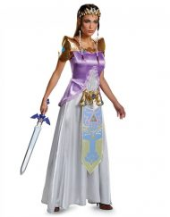 Adult Zelda Costume